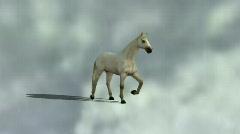 Arabian Horse walking 1 Stock Footage