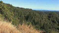 Mountain Lookout Pan Stock Footage