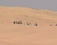 Desert tunis with tourists Stock Footage
