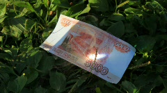 Five-thousandth denomination is burnt by magnifying glass on grass. Stock Footage