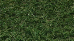 Hand touching artifial grass Stock Footage