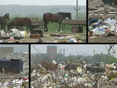 Landfill, garbage and waste multiscreen Stock Footage