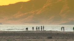 Beach Gathering Stock Footage