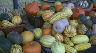 Gourds and pumpkins. Stock Footage