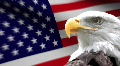 American Eagle Flag HD Footage