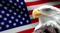 American Eagle Flag Stock Footage