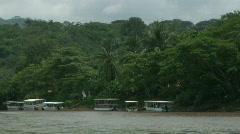 River Boats Lush Jungle Costa Rica Tarcoles River 02 Stock Footage