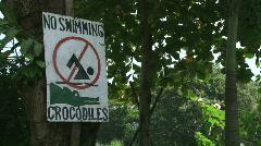 Crocodile Danger Costa Rica Tarcoles River 03 Stock Footage