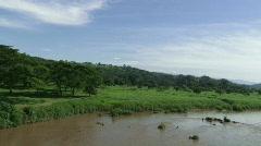 River Scenic - Costa Rica Tarcoles River 02 Stock Footage