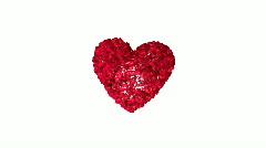 Heart flower 01 Stock Footage