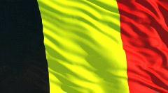 Belgia flag Stock Footage