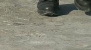 Desert Walk Stock Footage