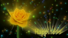 "Yellow rose ""Golden gate"" color meaning ""Happiness"" 2a alpha matte Stock Footage"