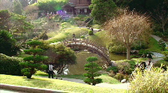Dramatic Japanese Gardens - stock footage