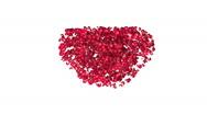 Heart flower 02 Stock Footage