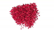 Heart flower 03 Stock Footage