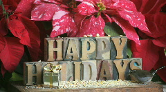 Happy holidays with wren and poinsettias Stock Footage