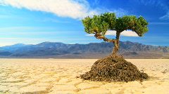 Time-lapse Climate Change Concept Stock Footage