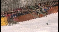 Stock Video Footage of wipe out on sledge, funny winter olympics.2