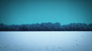 Stock Video Footage of jHD - Seasons - Winter - Snow Landscape 00060
