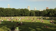 Stock Video Footage of Central Park Landscape 1