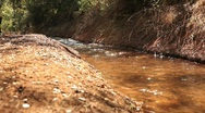 Stock Video Footage of Creek flowing