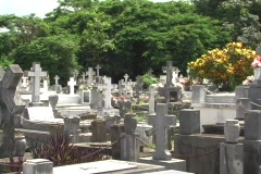 Old cemetery in Fajardo Stock Footage