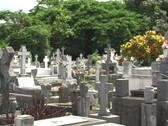 Stock Video Footage of Old cemetery in Fajardo