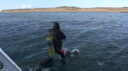 Stock Video Footage of 091213 diver jumping in to water from boat
