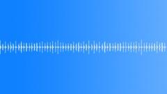 Shaker Groove 1 Stock Music