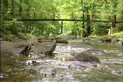 Smoky Mountain River and Bridge Stock Footage