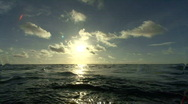 Sunset rebirth Stock Footage