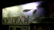 Fish swimming Stock Footage