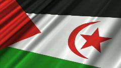 Western Shara Flag Loop 02 Stock Footage