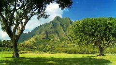 Rugged Beauty of Na Pali Cliffs, Hawaii Stock Footage