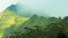 Rainforest Vegetation on Na Pali Cliffs, Hawaii Stock Footage