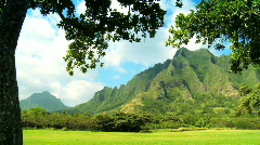 Na Pali Cliffs in Hawaii Stock Footage