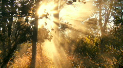 Volcanic Steam & Sunlight Effects Stock Footage