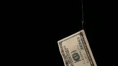 Dollars on fishing hook. Stock Footage