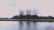 Stock Video Footage of Time Lapse 4 trees on a lake
