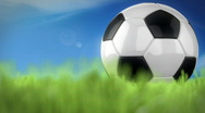 Stock Video Footage of soccer ball in grass loop