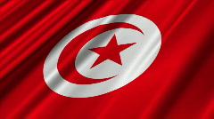 Tunisia Flag Loop 02 - stock footage