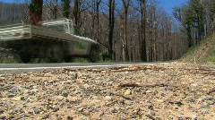 Car passing by burned trees  Stock Footage