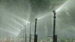 Sprinkle water Stock Footage