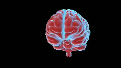 Brain Spin - stock footage