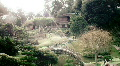 Large Japanese Bridge in Garden HD Footage