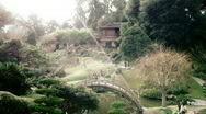 Stock Video Footage of Large Japanese Bridge in Garden