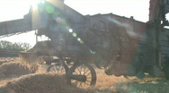Stock Video Footage of Threshing machine sunrise