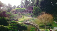Stock Video Footage of Japanese Gardens