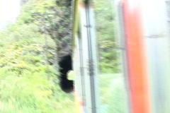 Peru-Machu-Picchu-Train-Ride-3 Stock Footage